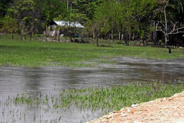 Fuerte invierno tiene en riesgo a varias familias en Mi Llanito