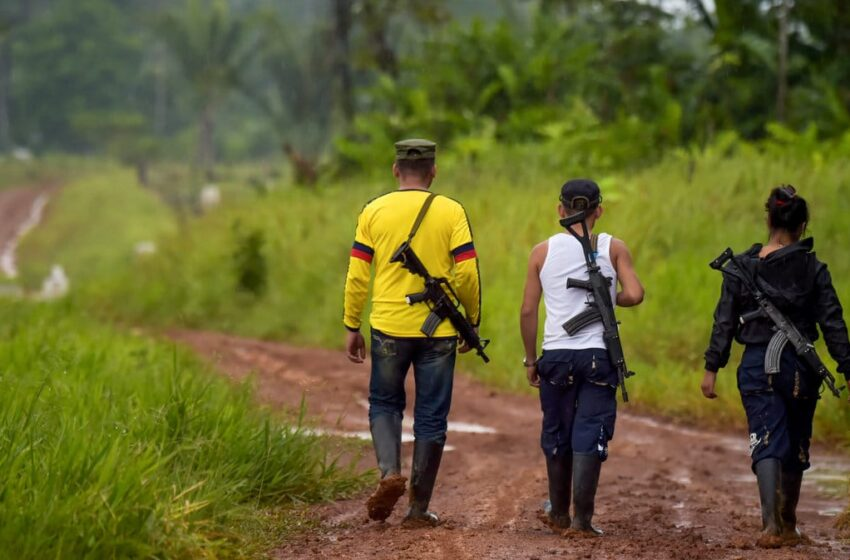 La ONU pide a actores armados colombianos cesar hostilidades ante pandemia