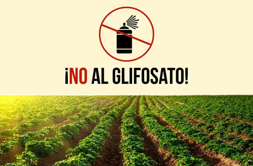 No al Glifosato señala congresista y denuncia reuniones de la Agencia de Licencias Ambientales