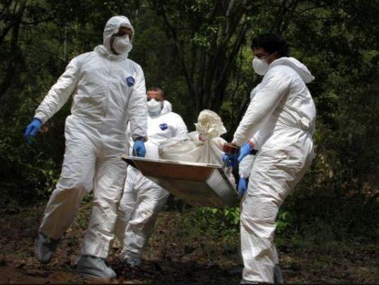 A medicina legal cuerpo hallado en avanzado estado de descomposición