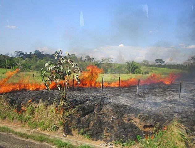 Mayor dinamismo para evitar quemas y deforestación, piden a Cormacarena