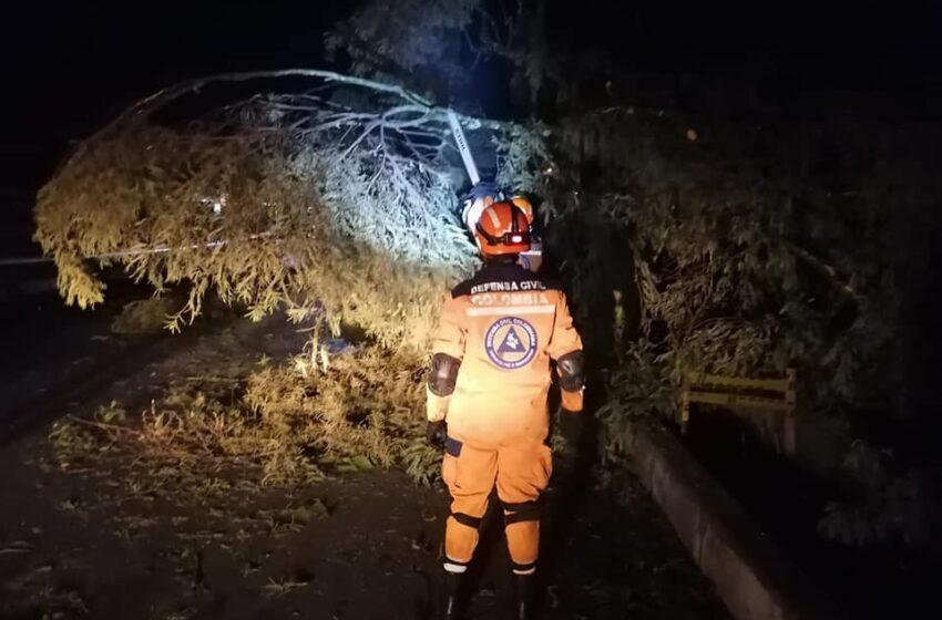 Sin energía varios sectores por caída de árboles y tormenta eléctrica que causó graves daños