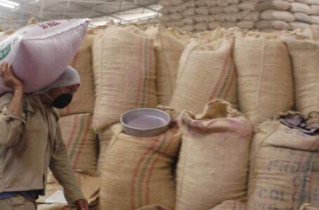 Malestar de arroceros por el ingreso de toneladas del cereal procedente del extranjero