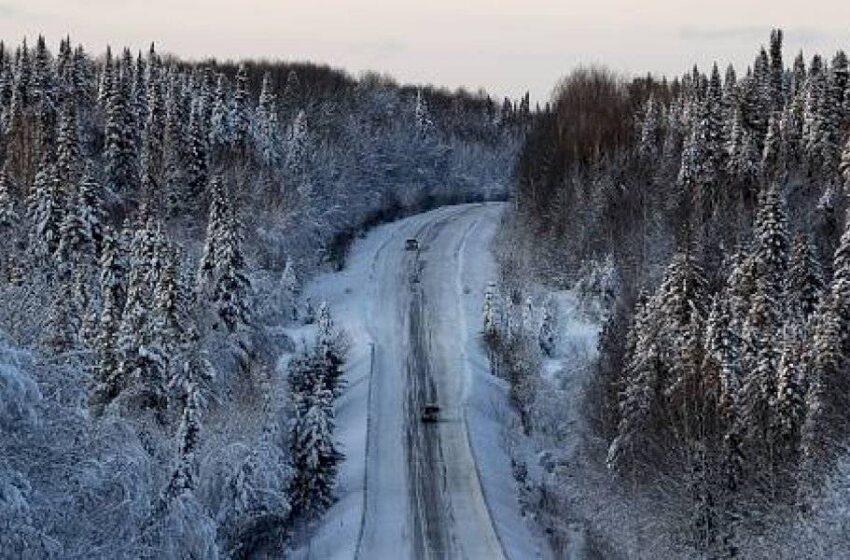 Joven murió congelado luego de que Google Maps le sugiriera un camino equivocado