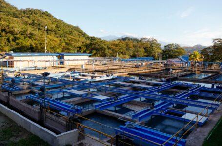 El Gobierno nacional reconoce tarea cumplida por la Empresa de Acueducto y Alcantarillado