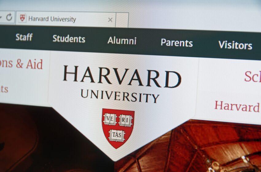 Esta es la oportunidad porque ahora todos pueden estudiar gratuitamente, incluso en Harvard