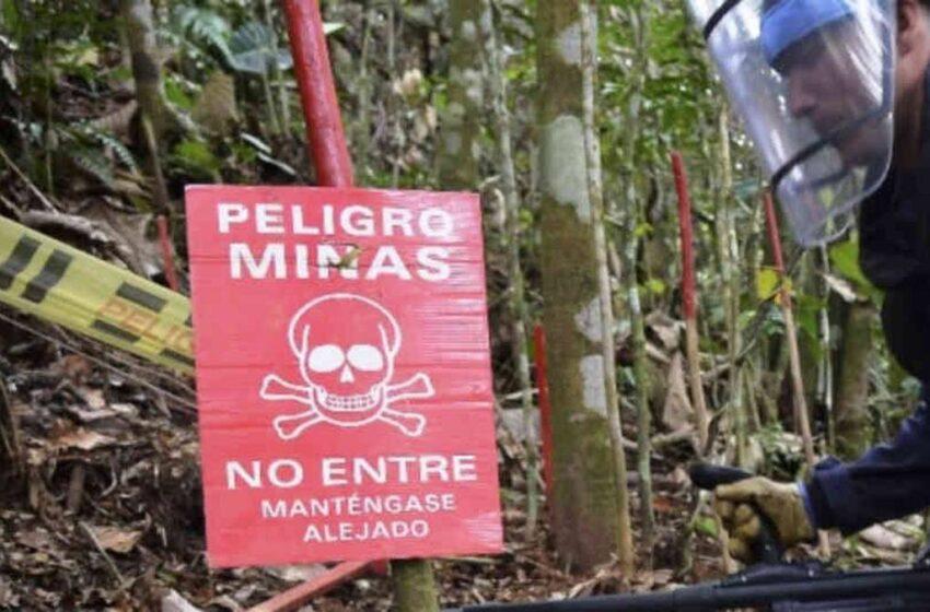 Minas antipersona dejan 104 víctimas en Colombia en el primer trimestre de 2021