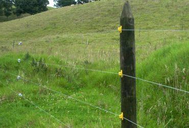 Cuidando un cultivo se acercó a la cerca eléctrica y murió carbonizado