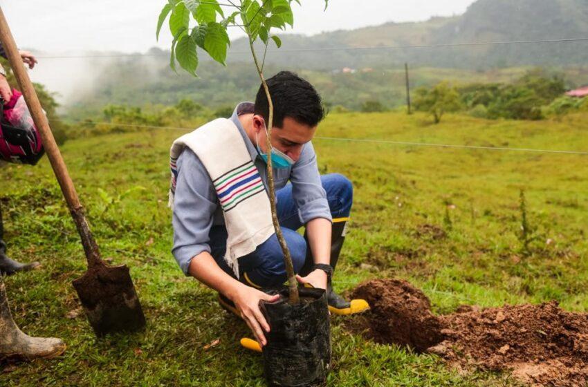 Urge la colaboración ciudadana para salvar la naturaleza, sostiene el Director de Cormacarena