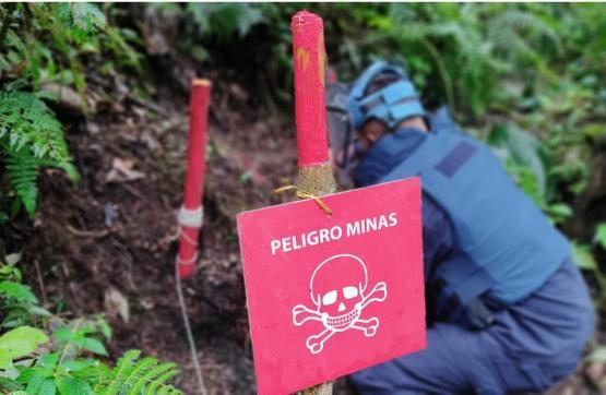 Productiva la labor de desminado que adelanta el ejército en el Meta y Guaviare