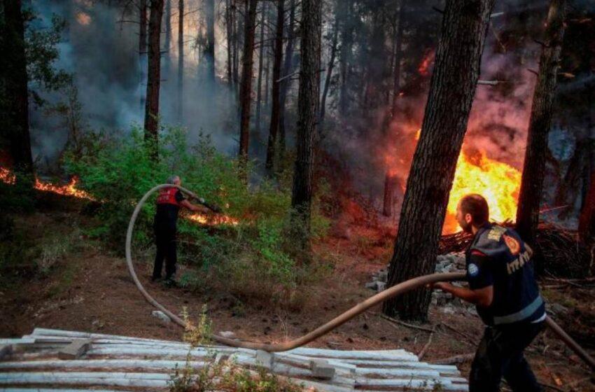 Turquía lucha por séptimo día consecutivo contra incendios en su costa sur