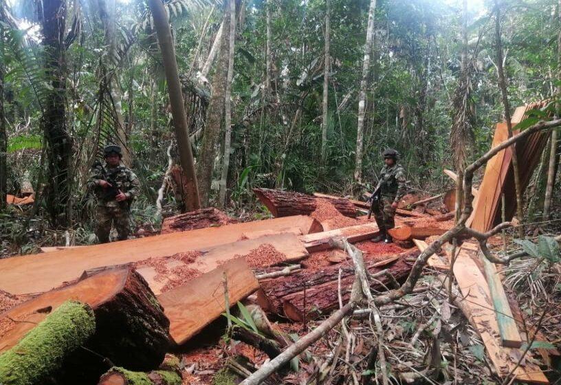 Ejército incautó madera en Mapiripán