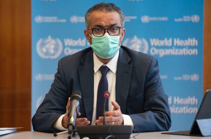 OMS informa de brote de fiebre amarilla en Venezuela y recomienda vacunación
